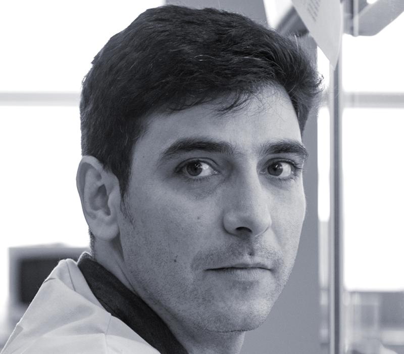 Dr. David Caballero-Lima